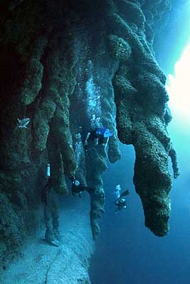 Blue-Hole-Belize-3