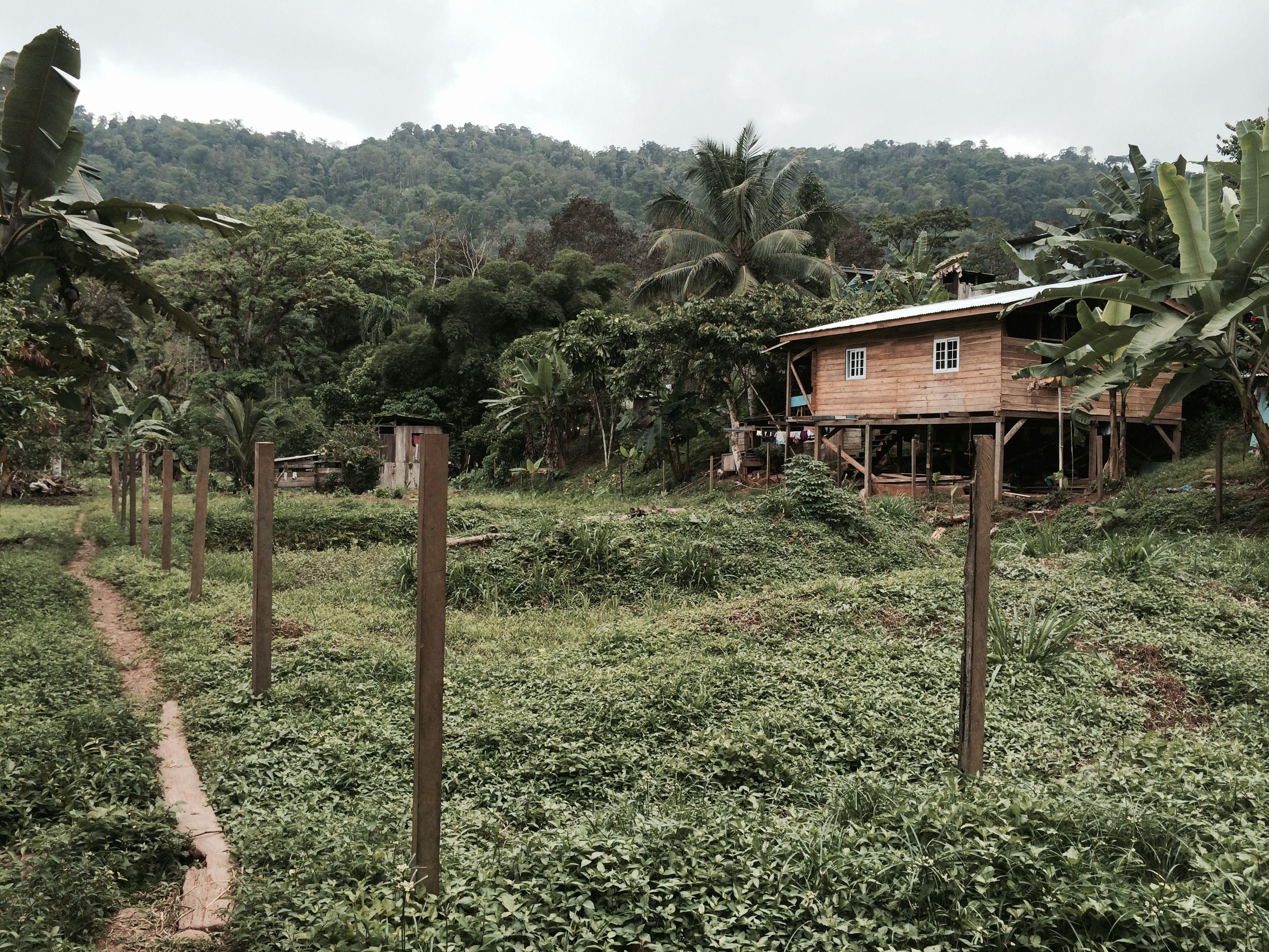 cacoa village