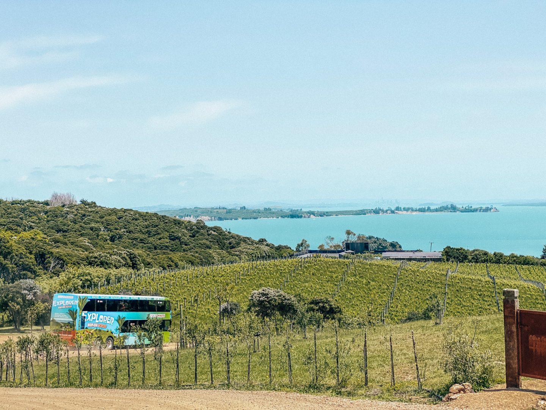 views over waiheke island