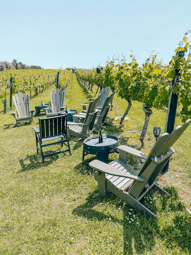 wineries on waiheke island
